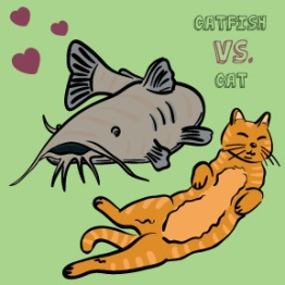 Catfish vs. Cat